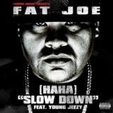 (Ha Ha) Slow Down (feat. Young Jeezy)