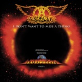 I Don't Want To Miss A Thing EP