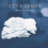Blue Gardenia