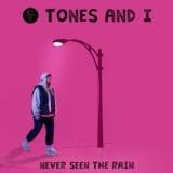 Never Seen The Rain
