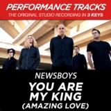 You Are My King (Amazing Love) [Performance Tracks] - EP