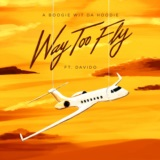 Way Too Fly (feat. DaVido)